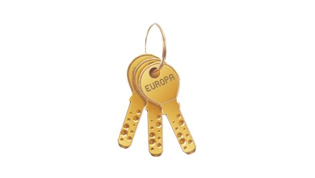 14 Pin Dimple Key
